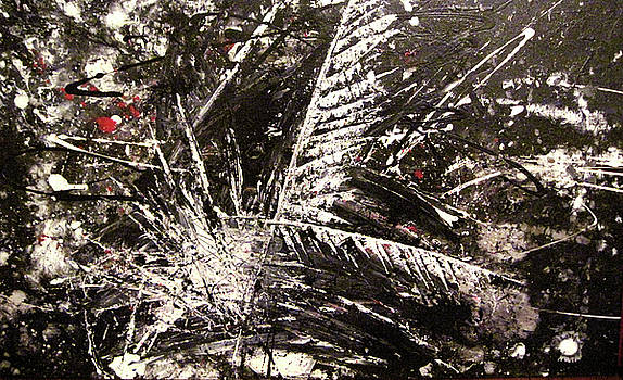 Untitled Feathers by Diane Clement