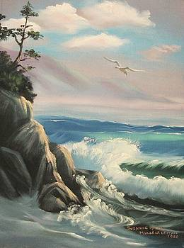Suzanne  Marie Leclair - Untitled Seascape