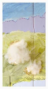Untitled Sheep 1 by Catalina Codreanu