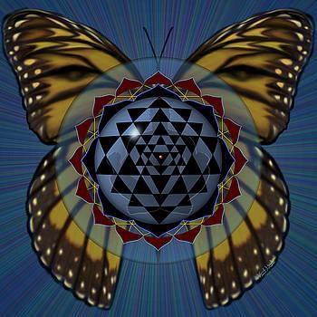 Transforming Meditation by Vincent Autenrieb