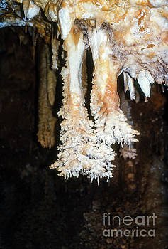 Bob Phillips - Unusual Cave Stalactites