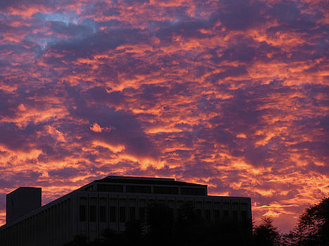 Unusual Sunset Clouds by Natalya Shvetsky