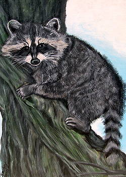Up a Tree by Vickie Wooten