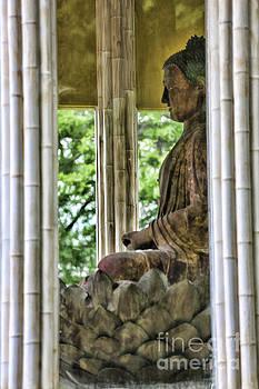 Chuck Kuhn - Up Close Buddha Shonfa Temple