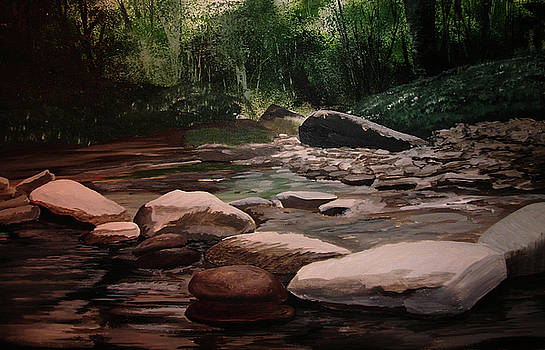 Up stream by Martin Williams