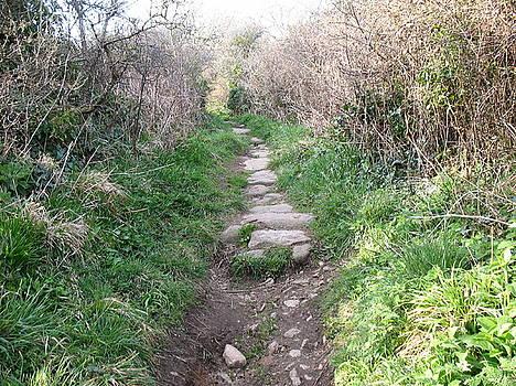 Uphill Walk by Tony Payne