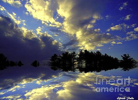 Upon Reflections by Elfriede Fulda