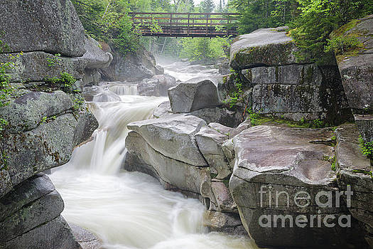 Upper Ammonoosuc Falls - Crawfords Purchase New Hampshire by Erin Paul Donovan