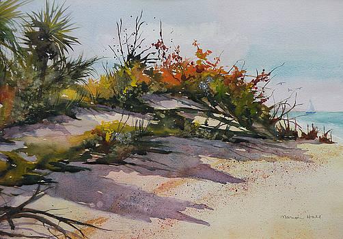 Upper Captiva Beach by Marion Hall