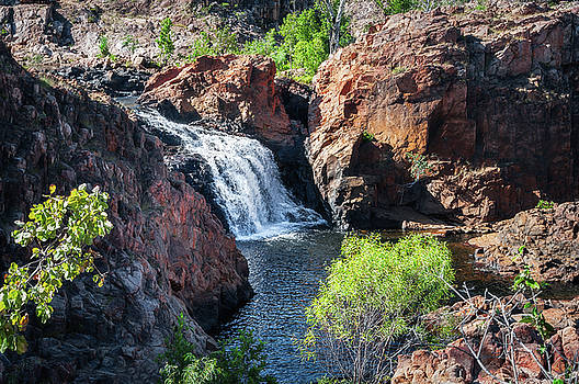 Upper Cascade of Edith Falls, katherine, Australia by Daniela Constantinescu