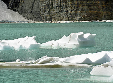 Upper Grinnell Lake with Icebergs by Bruce Gourley