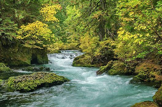 Upper McKenzie River in Autumn by Greg Vaughn