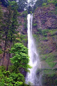 Lynn Bawden - Upper Multnomah Falls