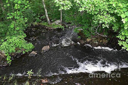 Upper Roaring Brook by Leslie M Browning