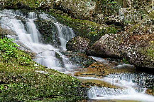 Upper Salroc Falls - Randolph New Hampshire  by Erin Paul Donovan