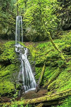 Upper Trestle Creek Falls by Greg Vaughn