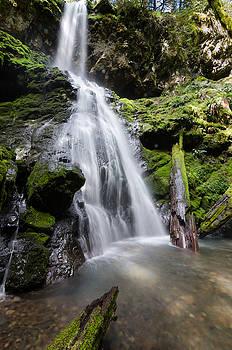 Margaret Pitcher - Upper Trestle Creek Falls