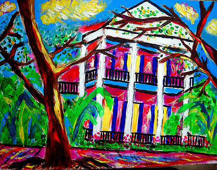 Uptown New Orleans by Ted Hebbler