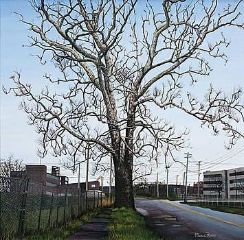 Urban Tree by Maria Rizzo