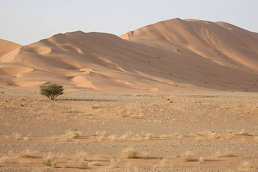 Uruq bani Ma'arid 5 by David Olson
