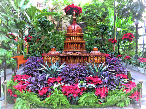 US Capitol - Holiday Display at US Botanic Gardens by Kerri Farley