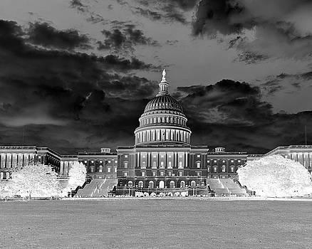 Kimberly Blom-Roemer - US Capitol Washington DC Negative