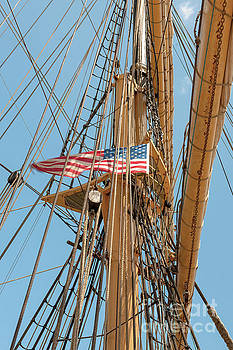 USA Mast Flag by Dale Powell
