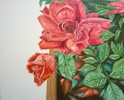 UTA Rose Garden by John Fierro