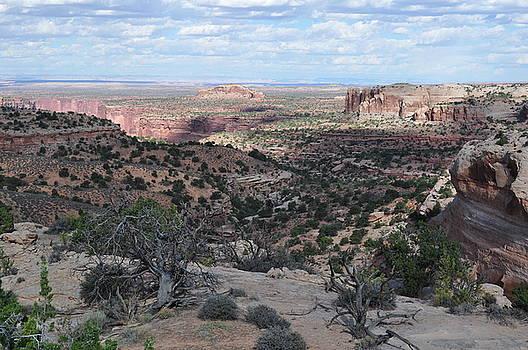 Utah Canyons by Jeff Moose