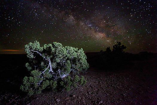 Utah Desert Sky by David Andersen
