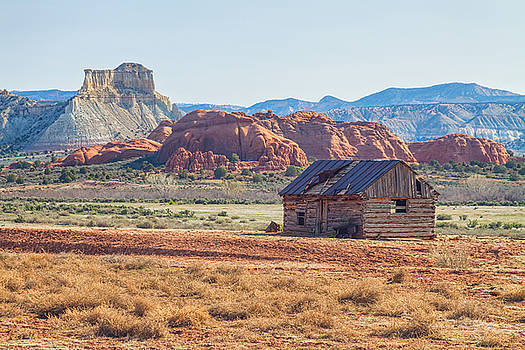 James BO Insogna - Utah Homestead