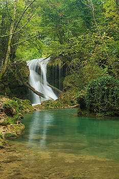 Vaioaga waterfall vertical by Florentina De Carvalho