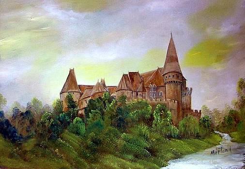 Vajdahunyad castle by Ibolya Marton