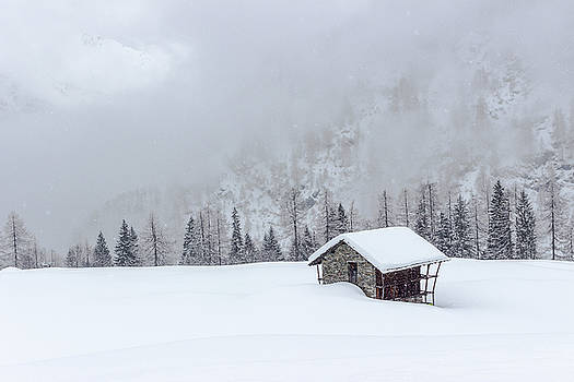 Val d'Otro - Piedmont / Italy by Massimo Mazza