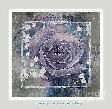 Valentine Rose by Kathleen Struckle