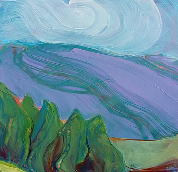 Valley Morning 34 by Pam Van Londen