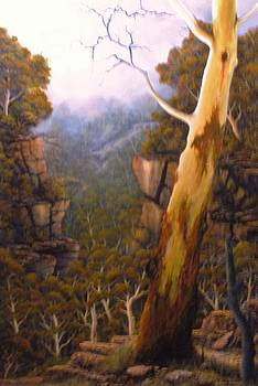 Valley Morning Dew by John Cocoris