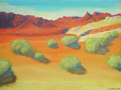 Valley Of Fire by James Violett II