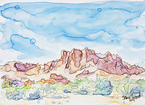 Valley of Fire by Shaina Stinard