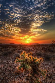 Valley of Fire Sunrise by Yves Keroack