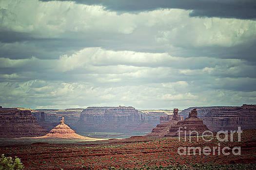Valley of the Gods, Utah by Joan McCool