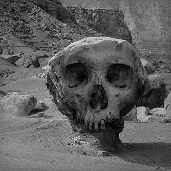 David Gordon - Valley of the Skulls I BW