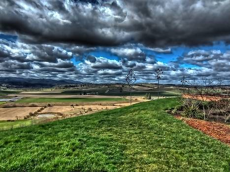 Thom Zehrfeld - View From The Van Duzer Vineyards