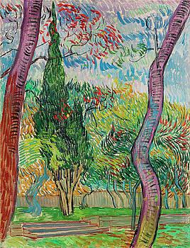 Van Gogh Garden of Saint Paul Hospital by Vincent Van Gogh