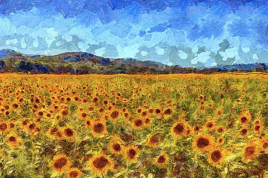 Van Gogh Summer Sunflowers by David Pyatt