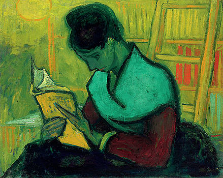 Van Gogh The Novel Reader by Vincent Van Gogh