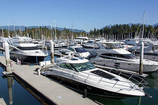 Ramunas Bruzas - Vancouver Marina Boats