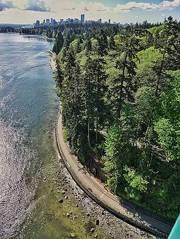 Vancouver Seawall and Forest by Steffani Cameron