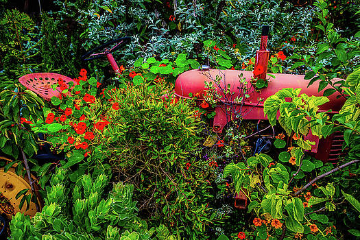 Vanishing Tractor by Garry Gay