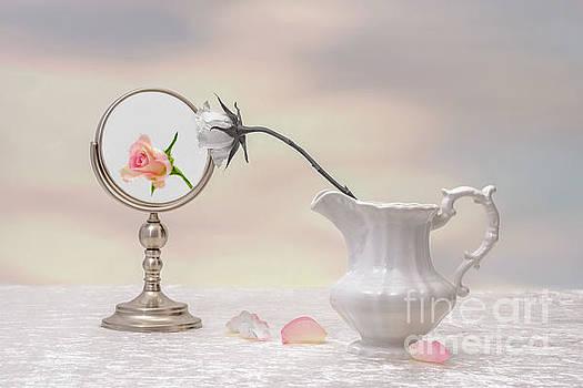 Vanity by Amanda Elwell